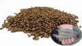 Đạm côn trùng thay thế bột cá trong thức ăn thủy sản