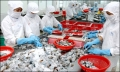 Nhật Bản: tăng trưởng nhập khẩu thủy sản đạt 2 con số