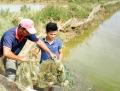 Quảng Trị: Nuôi trồng thủy sản xen canh cho hiệu quả cao và sạch bệnh