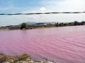 Hồ chứa nước khu chế biến hải sản Tân Hải chuyển màu đỏ, tràn ra sông