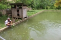 Đặc sản cá dầm xanh Mai Châu