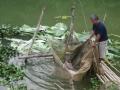 Mô hình nuôi cá hồ chứa nhỏ ở xã Dân Chủ