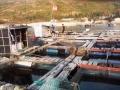 Vụ gây sự cố tràn dầu ở biển Quy Nhơn (Bình Định): Cần xác minh, kết luận chính xác mức bồi thường thiệt hại