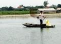 4 mô hình nuôi cá sạch giúp nông dân đổi đời