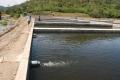 Doanh nghiệp ngang nhiên ngăn suối để nuôi cá