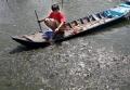 Làm giả hồ sơ sản phẩm thủy sản: Giơ cao đánh khẽ?