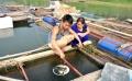 Tuyên Quang: Tháo gỡ khó khăn cho các hộ nuôi cá lồng trên sông, hồ