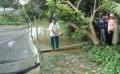 Vĩnh Long: Hiệu quả của mô hình nuôi ếch trong vèo hết hợp với cá trê vàng