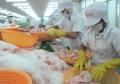 Người nuôi thủy sản khó tiếp cận vốn rẻ