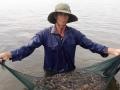 Nuôi tôm sinh học ở Bình Định