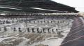 Sắp có khu phức hợp công nghệ cao nuôi tôm tại Kiên Giang?