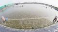 Kiên Giang: Nhiều giải pháp nuôi tôm an toàn và hiệu quả