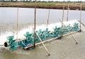 Kim Sơn: Các hộ nuôi tôm vào vụ nuôi thả mới