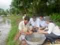 Người nuôi tôm Sóc Trăng cần chủ động đề phòng dịch bệnh trên tôm