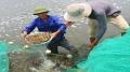 Khung lịch thời vụ thả giống nuôi trồng thủy sản năm 2018 tỉnh Hà Tĩnh