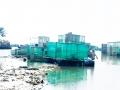 Ồ ạt nuôi trồng thủy sản ven bờ