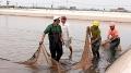 Đẩy mạnh nuôi thủy sản những tháng cuối năm