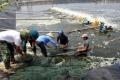 Phó Tổng cục trưởng Tổng cục Thủy sản Nguyễn Huy Điền kiểm tra sản xuất nuôi trồng thủy sản tại Hà Tĩnh