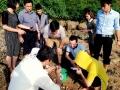 Quảng Ninh: Sản xuất giống ốc nhảy da vàng