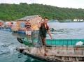 Kiên Giang: phát triển toàn diện thủy sản kinh tế biển