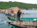 Kiên Giang phát triển nuôi cá lồng bè trên biển
