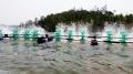 Thông tin quan trắc môi trường nước Trà Vinh đợt 2 tháng 1