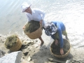 Phường Xuân Yên (TX Sông Cầu): Điểm sáng về mô hình quản lý cộng đồng trong nuôi trồng thủy sản