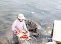 Góc khuất hải sản khô