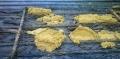 Một số lưu ý nhằm hạn chế dịch bệnh và nâng cao hiệu quả mô hình nuôi lươn không bùn