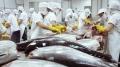 Giá trị thủy sản tăng cao nhờ đảm bảo vệ sinh an toàn thực phẩm