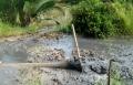 Cà Mau: Nhiều bức xúc mùa sên vuông