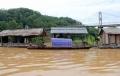 Nghệ An: Cá lồng chết do mưa lũ
