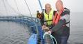 Sử dụng Robot để vệ sinh lồng nuôi cá Hồi