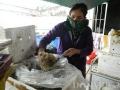 Hà Tĩnh: Sứa biển chất đống bốc mùi hôi thối chờ… hỗ trợ