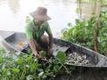 Tận diệt nguồn thủy sản