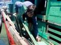 Thêm 5 tàu cá của ngư dân Quảng Ngãi bị tàu nước ngoài tấn công