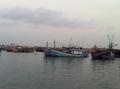 Đà Nẵng: 3,2 tỷ đồng hỗ trợ ngư dân đóng mới 5 tàu cá