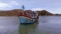 Công khai, phạt nặng tàu cá vi phạm hướng tới thẻ xanh EC