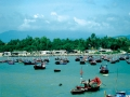 Những khoang tàu vơi dần tôm, cá…