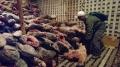 Ecuador bắt tàu Trung Quốc chở đầy cá mập
