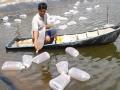 Đến năm 2020, cung cấp 100% giống thủy sản