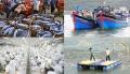 EU thanh tra thủy sản Việt Nam