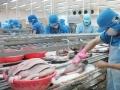 FDA được đề nghị tiếp tục vai trò thanh tra cá tra Việt Nam