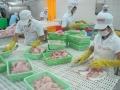 Ủy ban Châu Âu chuẩn bị thanh tra hệ thống kiểm soát an toàn thực phẩm của thủy sản Việt Nam