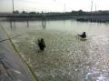Bà Rịa-Vũng Tàu: Thiếu nước mặn ở vùng nuôi tôm