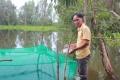 Thoát nghèo nhờ áp dụng mô hình nuôi ếch kết hợp nuôi cá