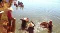 Bình Định: Tăng cường các biện pháp nuôi tôm bền vững