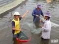 """Ninh Thuận: Tạo """"cú huých"""" cho phát triển nuôi trồng thủy sản"""