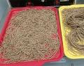 Thức ăn cho cá rô phi được làm từ hạt mít