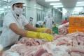 VASEP phản đối Hoa Kỳ áp thuế 'vô lý' với cá tra Việt